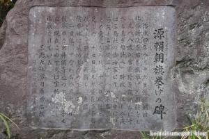 三島大社(静岡県三島市大宮)51