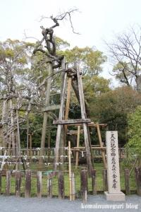 三島大社(静岡県三島市大宮)25