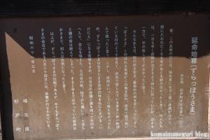 中央神社(北葛飾郡杉戸町並塚)5