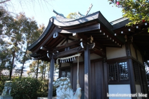 中央神社(北葛飾郡杉戸町並塚)12