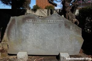 中央神社(北葛飾郡杉戸町並塚)16