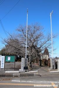中央神社(北葛飾郡杉戸町並塚)1