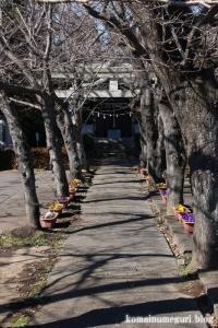 中央神社(北葛飾郡杉戸町並塚)3