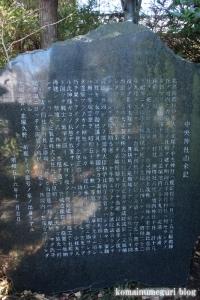 中央神社(北葛飾郡杉戸町並塚)8