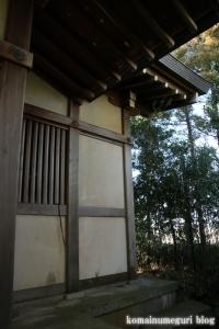 中央神社(北葛飾郡杉戸町並塚)13