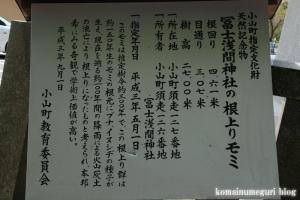 東口本宮冨士浅間神社(静岡県駿東郡小山町須走)52