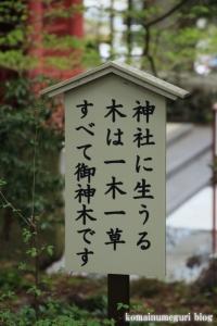 東口本宮冨士浅間神社(静岡県駿東郡小山町須走)63