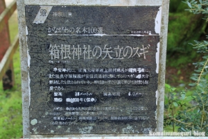 箱根神社(神奈川県足柄下郡箱根町元箱根)4
