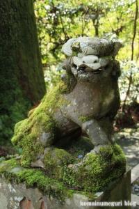 箱根神社(神奈川県足柄下郡箱根町元箱根)24