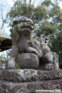 美女木八幡神社(戸田市美女木)53