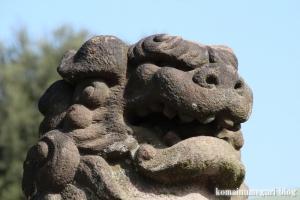 新曽氷川神社(戸田市氷川町)27