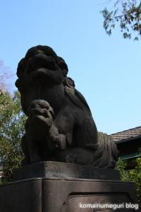 上戸田氷川神社(戸田市上戸田)21