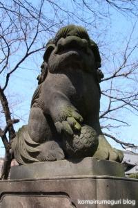 上戸田氷川神社(戸田市上戸田)25