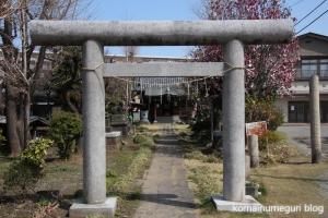 下戸田氷川神社(戸田市中央)4