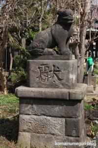 下戸田氷川神社(戸田市中央)20