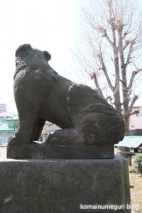 下戸田氷川神社(戸田市中央)22