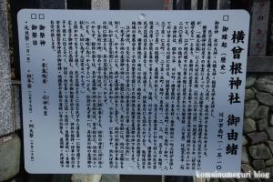 横曽根神社(川口市南町)4