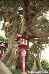 八坂神社(多摩市連光寺)15