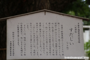 八坂神社(多摩市連光寺)5
