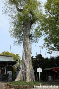 白山神社(多摩市連光寺)4