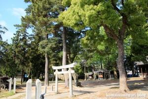 若宮八幡神社(足立区伊興)1