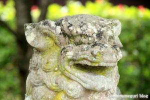 白山神社(白山比咩神社)(桜井市黒崎)18