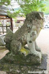 白山神社(白山比咩神社)(桜井市黒崎)12