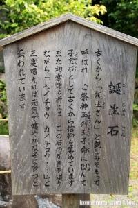 玉列(たまつら)神社(桜井市慈恩寺)11