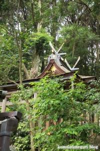 玉列(たまつら)神社(桜井市慈恩寺)22