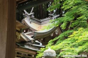 等彌(とみ)神社(桜井市桜井)78
