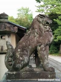東照宮・諏訪神社(行田市本丸)12