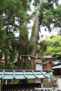 大神(おおみわ)神社(桜井市三輪)28