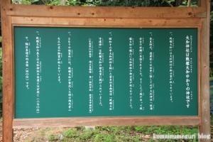 大和神社(天理市新泉町)10