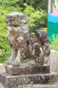 大和神社(天理市新泉町)12