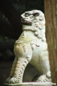 和爾下(わにした)神社 (天理市櫟本町)38