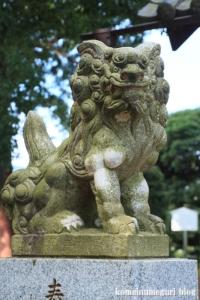 砂氷川神社(川越市砂)9