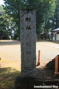 日枝神社(川越市下新河岸1