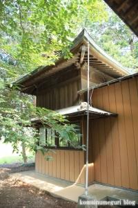 南田島氷川神社(川越市南田島)11