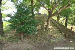 氷川神社(川越市大中居)11