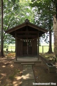 氷川神社(川越市久下戸)15