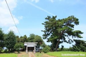 陸道稲荷神社(川越市萱沼)1