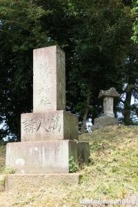 氷川神社(川越市古谷郷上組)19