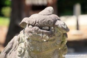 古尾谷八幡神社(川越市古谷本郷下組)39