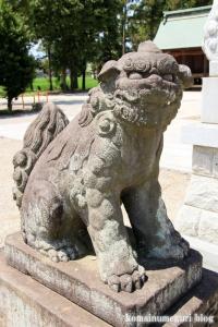 古尾谷八幡神社(川越市古谷本郷下組)35