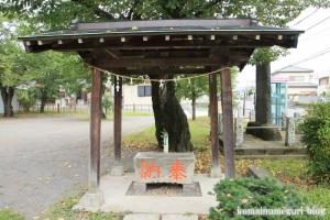 金山神社(さいたま市西区佐知川)6