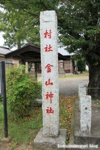 金山神社(さいたま市西区佐知川)3