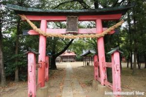 二ツ宮氷川神社(さいたま市西区二ツ宮)5