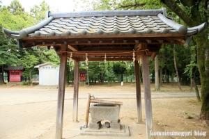 二ツ宮氷川神社(さいたま市西区二ツ宮)8