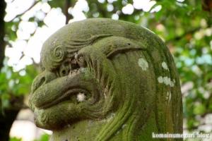 二ツ宮氷川神社(さいたま市西区二ツ宮)24