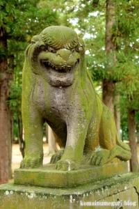 二ツ宮氷川神社(さいたま市西区二ツ宮)15